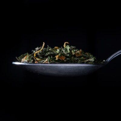 herbata konopna plantfarm